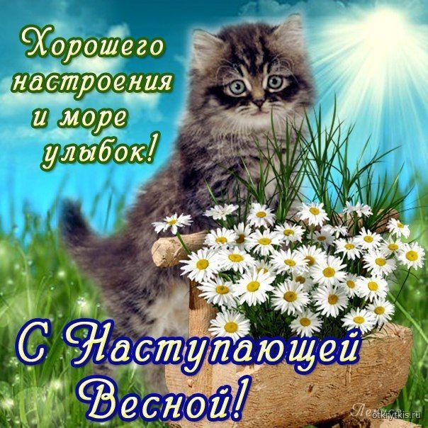 Поздравляю с наступающей весной Весенняя природа