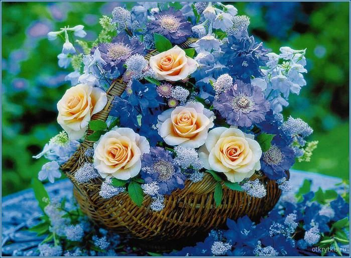 Открытки с цветами красивые Цветы