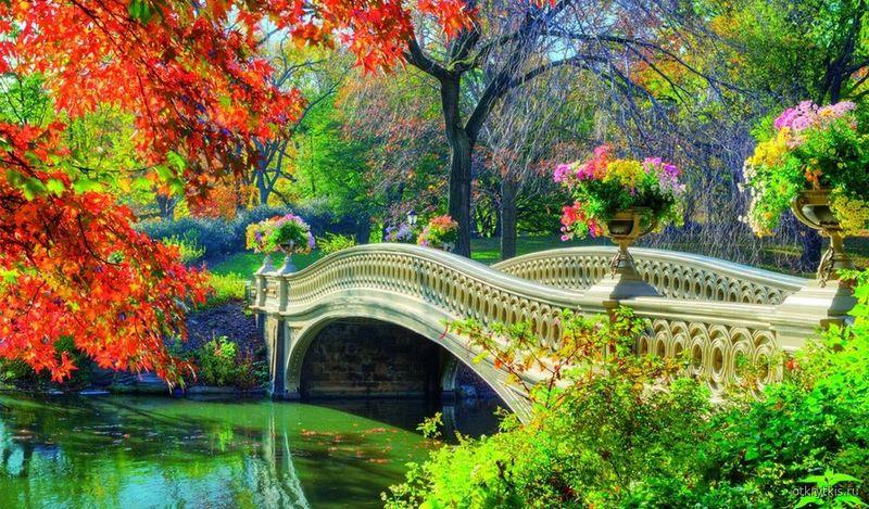 Осень в парке Времена года осень