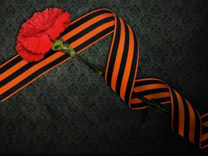 Георгиевская лента и гвоздика 9 Мая день Победы